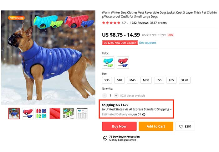 How to Find the Best Suppliers on AliExpress - Shipping Time Example