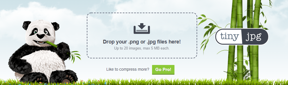 image compression image - winner picker